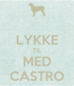 Poster:  LYKKE TIL MED CASTRO