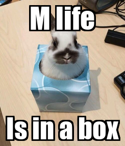 Poster: M life Is in a box