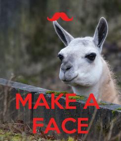 Poster:    MAKE A  FACE