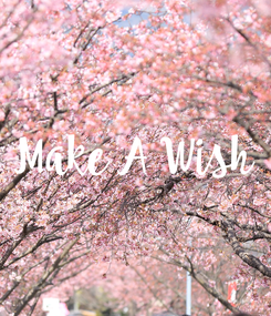 Poster: Make A Wish