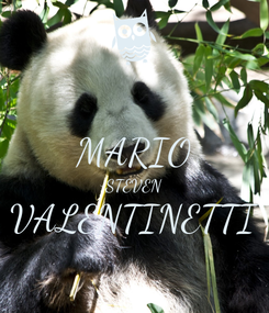 Poster:  MARIO STEVEN VALENTINETTI