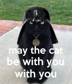 Poster:   may the cat be with you with you