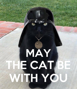 Poster:   MAY THE CAT BE WITH YOU