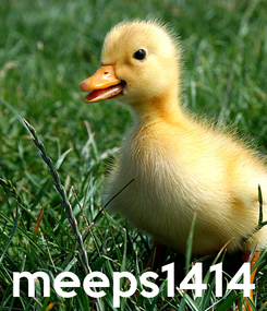Poster:     meeps1414