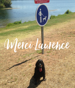 Poster: Merci Laurence