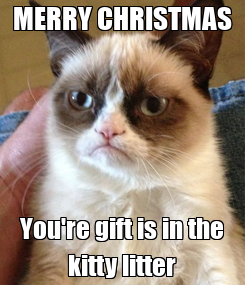 Poster: MERRY CHRISTMAS You're gift is in the kitty litter