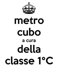 Poster: metro cubo a cura della classe 1°C