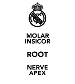 Poster: MOLAR INSICOR ROOT NERVE APEX