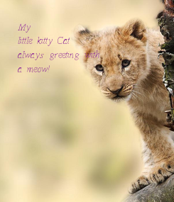 Poster: My little kitty Cat always greeting with a meow!