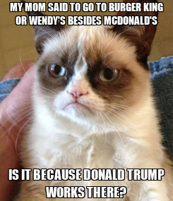 Poster: MY MOM SAID TO GO TO BURGER KING OR WENDY'S BESIDES MCDONALD'S IS IT BECAUSE DONALD TRUMP WORKS THERE?