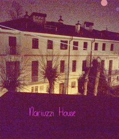 Poster:      Nariuzzi House