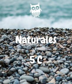 Poster:  Naturales  5°C