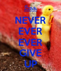 Poster: NEVER EVER EVER GIVE UP