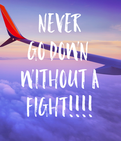 Poster: NEVER GO DOWN  WITHOUT A FIGHT!!!!