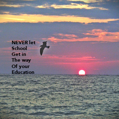 Poster: NEVER let School Get in  The way Of your Education