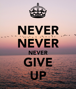 Poster: NEVER NEVER NEVER GIVE UP