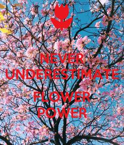 Poster: NEVER UNDERESTIMATE  FLOWER POWER