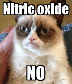 Poster: Nitric oxide NO