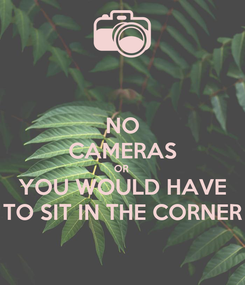 Poster: NO CAMERAS OR  YOU WOULD HAVE TO SIT IN THE CORNER