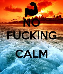 Poster: NO  FUCKING   CALM