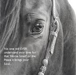 Poster: No one will EVER 