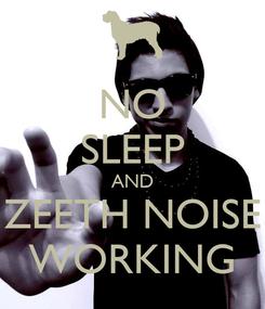 Poster: NO SLEEP AND ZEETH NOISE WORKING