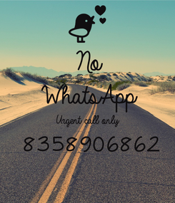 Poster: No WhatsApp Urgent call only  8358906862