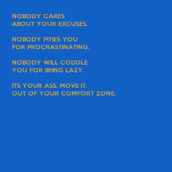 Poster: NOBODY CARES  ABOUT YOUR EXCUSES.  NOBODY PITIES YOU  FOR PROCRASTINATING.  NOBODY WILL CODDLE  YOU FOR BEING LAZY.  ITS YOUR ASS. MOVE IT. OUT OF YOUR COMFORT ZONE.