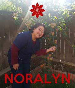 Poster:     NORALYN