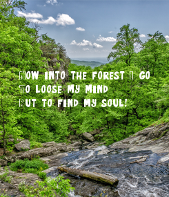 Poster: Now into the forest I go,