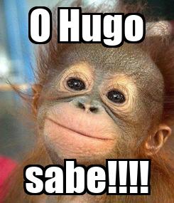 Poster: O Hugo sabe!!!!