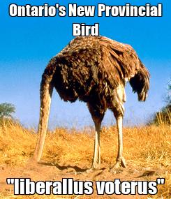 """Poster: Ontario's New Provincial Bird """"liberallus voterus"""""""