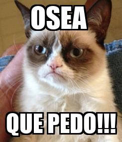 Poster: OSEA  QUE PEDO!!!