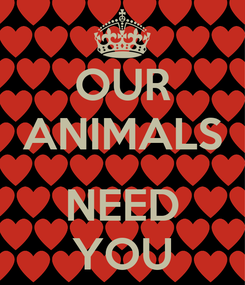 Poster: OUR ANIMALS  NEED YOU