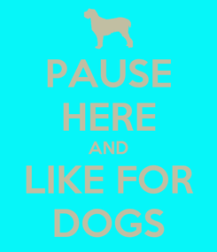 Poster: PAUSE HERE AND LIKE FOR DOGS
