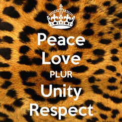 Poster: Peace Love PLUR Unity Respect