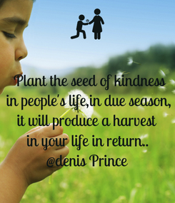 Poster:  Plant the seed of kindness  in people's life,in due season,  it will produce a harvest  in your life in return.. @denis Prince