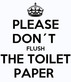 Poster: PLEASE DON´T  FLUSH THE TOILET PAPER