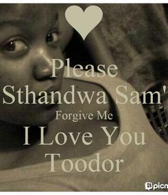 Poster: Please Sthandwa Sam' Forgive Me I Love You Toodor