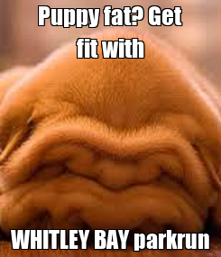 Poster: Puppy fat? Get fit with WHITLEY BAY parkrun
