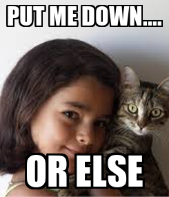 Poster: PUT ME DOWN.... OR ELSE