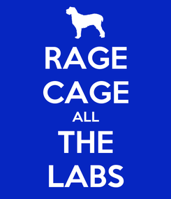 Poster: RAGE CAGE ALL THE LABS