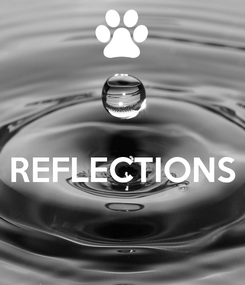 Poster:   REFLECTIONS