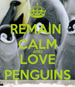 Poster: REMAIN  CALM AND LOVE PENGUINS