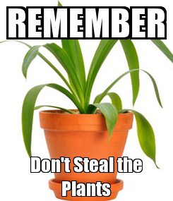 Poster: REMEMBER Don't Steal the Plants