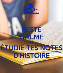 Poster: RESTE CALME ET ÉTUDIE TES NOTES D'HISTOIRE