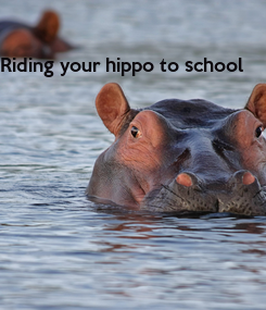 Poster: Riding your hippo to school