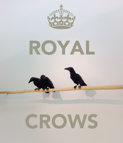 Poster: ROYAL    CROWS