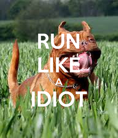 Poster: RUN LIKE A IDIOT