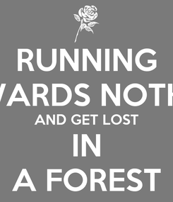 Poster: RUNNING TOWARDS NOTHING AND GET LOST IN A FOREST